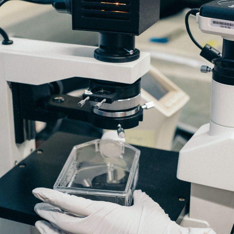Laboratory & Medial